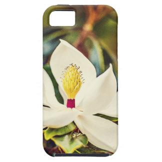 Capas Para iPhone 5 Magnólia lindo de Mississippi
