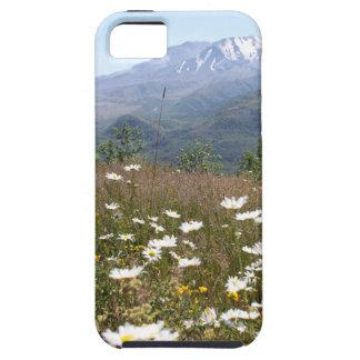 Capas Para iPhone 5 Mount Saint Helens