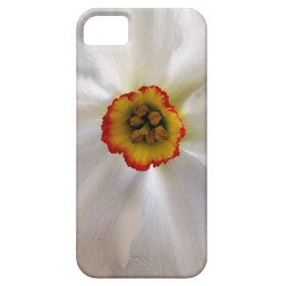 Capas Para iPhone 5 narciso do branco da pérola