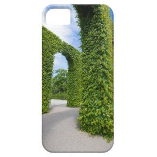 Capas Para iPhone 5 O verde deixa arcos