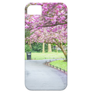 Capas Para iPhone 5 Parque bonito durante o primavera