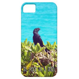Capas Para iPhone 5 Pássaro preto