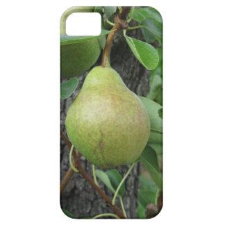Capas Para iPhone 5 Peras verdes que penduram em uma árvore de pera