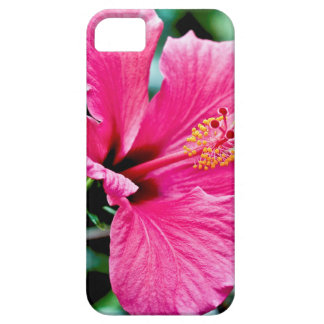 Capas Para iPhone 5 Pink hibisco