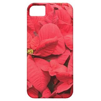 Capas Para iPhone 5 Poinsétia vermelha