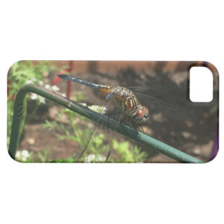 Capas Para iPhone 5 Presentes da libélula