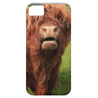 Capas Para iPhone 5 Scottish país de alto Cattle - Scotland