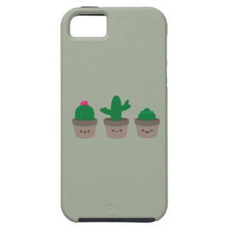 Capas Para iPhone 5 Succulent doce