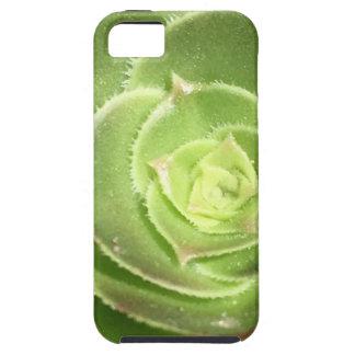 Capas Para iPhone 5 Succulent verde