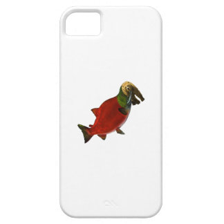 Capas Para iPhone 5 Swithched