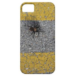 Capas Para iPhone 5 Um tarantula que cruza a estrada