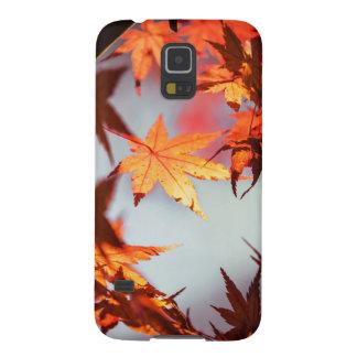 Capinha Galaxy S5 Árvore de bordo vermelha das folhas de outono da