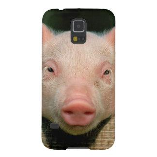 Capinha Galaxy S5 Fazenda de porco - cara do porco