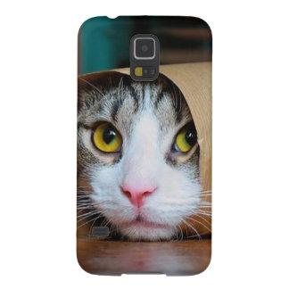 Capinha Galaxy S5 Gato de papel - gatos engraçados - meme do gato -