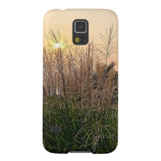 Capinha Galaxy S5 Junco no por do sol