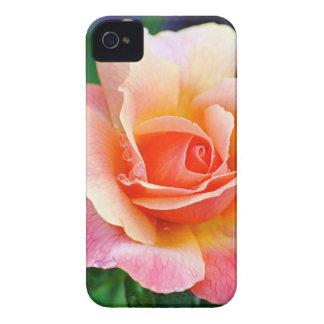 Capinha iPhone 4 Aperfeiçoe cor-de-rosa na flor