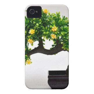 Capinha iPhone 4 Árvore dos bonsais