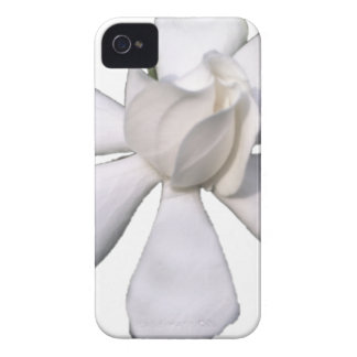 Capinha iPhone 4 Botão branco 201711g do Gardenia
