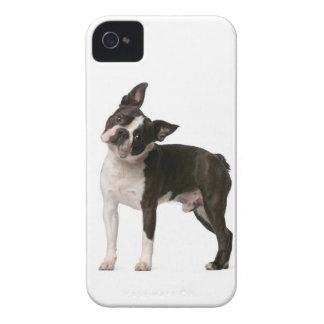 Capinha iPhone 4 Buldogue francês - cão de filhote de cachorro -