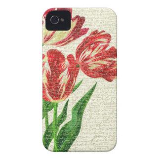 Capinha iPhone 4 Caligrafia vermelha das tulipas