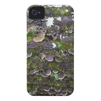 Capinha iPhone 4 divertimento mossy do cogumelo