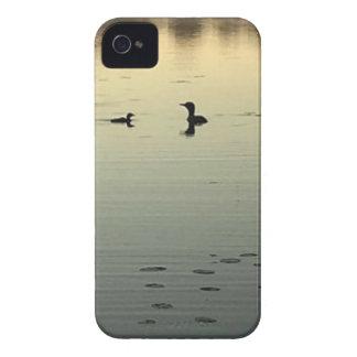 Capinha iPhone 4 Dois mergulhões-do-norte