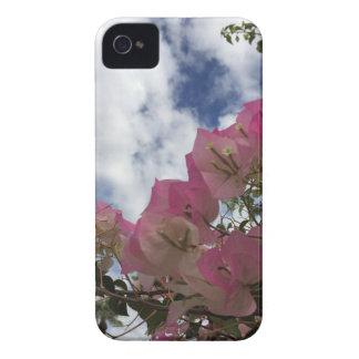 Capinha iPhone 4 flores cor-de-rosa contra um céu azul
