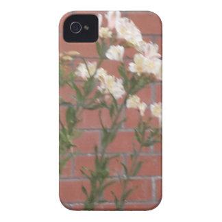 Capinha iPhone 4 Flores no tijolo