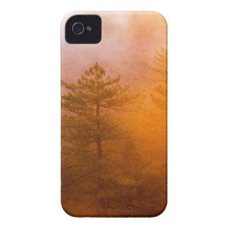 Capinha iPhone 4 Floresta dourada da corriola