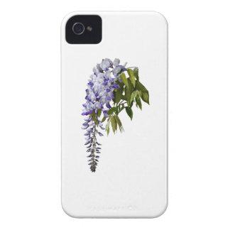 Capinha iPhone 4 Glicínias e folhas