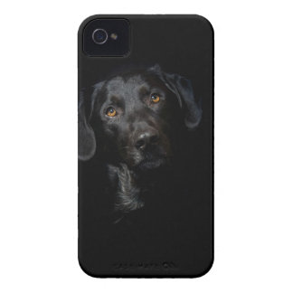Capinha iPhone 4 Labrador retriever preto customizável