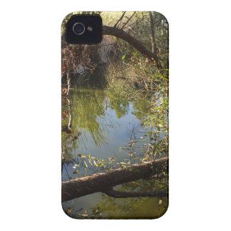 Capinha iPhone 4 Lago 4 park da garganta de Franklin