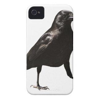 Capinha iPhone 4 Pássaro do corvo