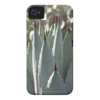 Capinha iPhone 4 Pontos da agave
