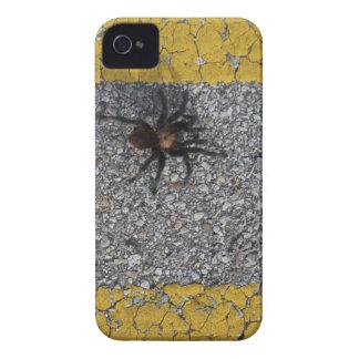 Capinha iPhone 4 Um tarantula que cruza a estrada