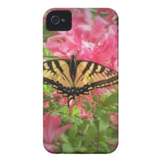 Capinhas iPhone 4 A borboleta de Swallowtail senta-se em azáleas