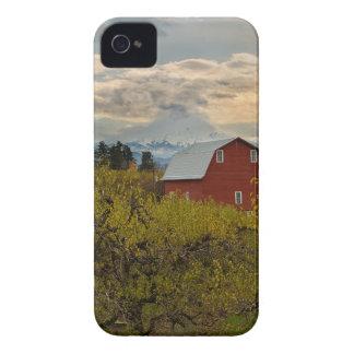 Capinhas iPhone 4 Celeiro vermelho no pomar Oregon da pera