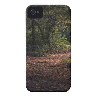 Capinhas iPhone 4 Floresta durante o dia