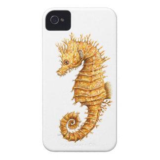 Capinhas iPhone 4 Hipocampo do hipocampo do cavalo de mar