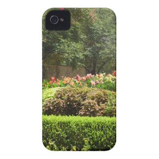Capinhas iPhone 4 jardim bonito