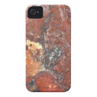 Capinhas iPhone 4 Madeira Petrified de AZ