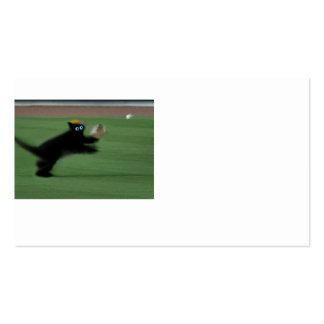 Captura de mergulho do gato do basebol