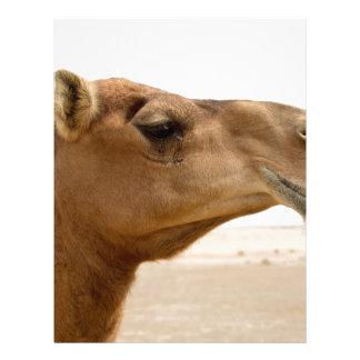 Cara do camelo papeis de carta personalizados