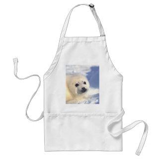 Cara do filhote de cachorro de selo avental