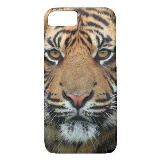 Cara do tigre capa iPhone 8/ 7