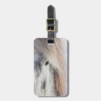 Cara islandêsa branca do cavalo, Islândia Etiqueta De Bagagem