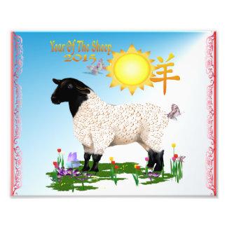 Cara preta - ano dos carneiros impressão de foto