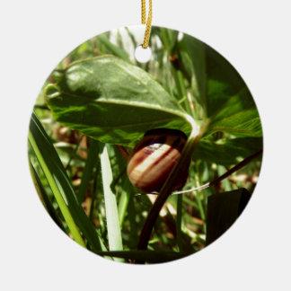caracol sneaky ornamento de cerâmica redondo