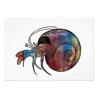 Caranguejo de eremita foto