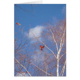 Cardeais do inverno cartão comemorativo